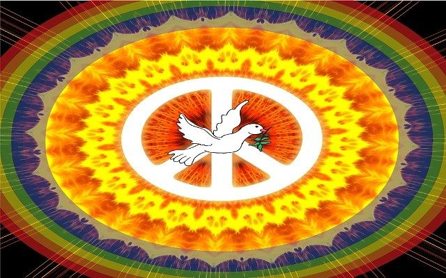 Maybe Some Woodstock
